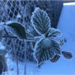 Zima 8.B